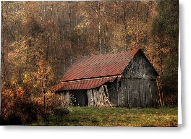 Resting Place Greeting Card by Mike Eingle