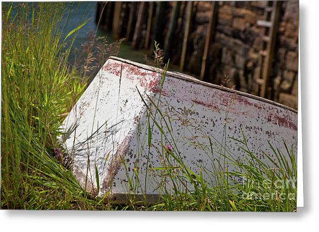 Greeting Card featuring the photograph Resting Rowboat by Susan Cole Kelly