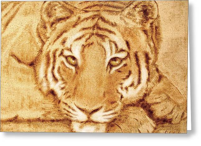 Resting Tiger Greeting Card by Dale Loos Jr