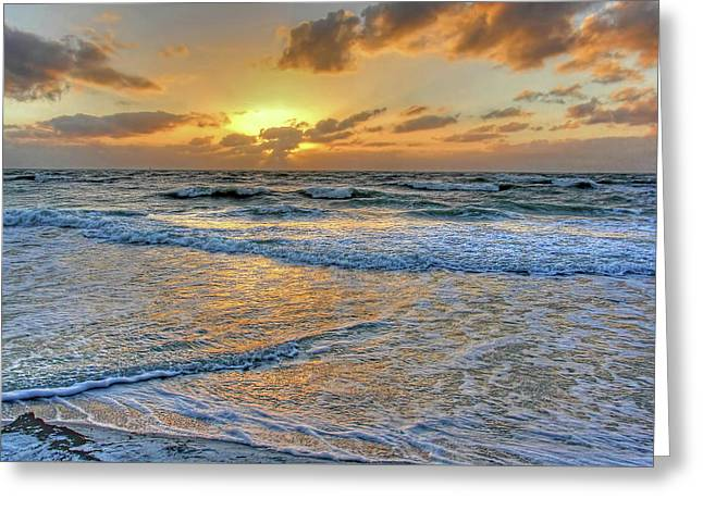 Restless Greeting Card by HH Photography of Florida