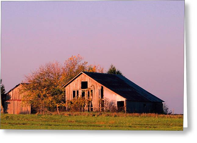 Retired Barns Greeting Card by Tammy Miller
