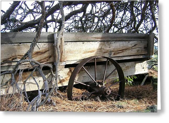 Retired Farm Wagon Greeting Card by Will Borden
