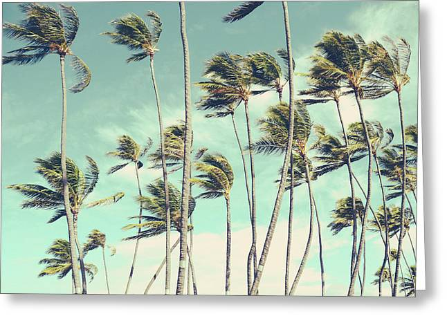 Retro Vintage Hawaii Palm Trees In The Wind Greeting Card