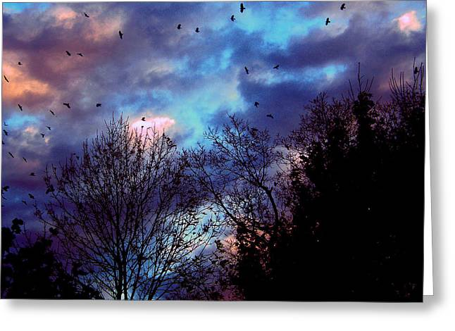 Return Of The Crows Greeting Card by Martin Morehead