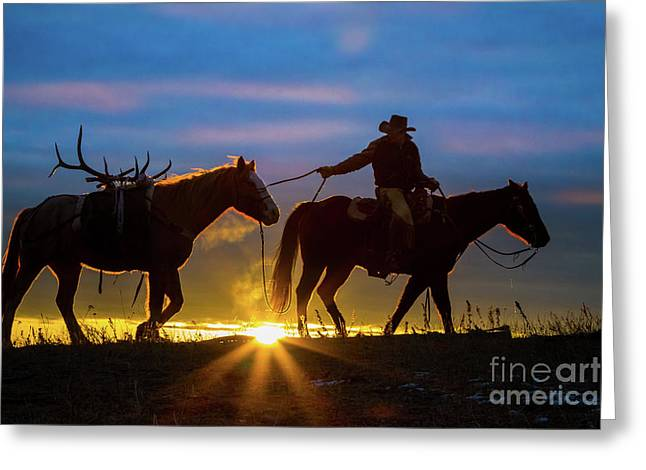Returning Home Greeting Card by Inge Johnsson