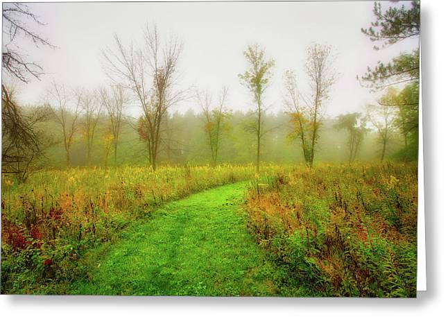 Retzer Nature Center Trail In Utumn Greeting Card by Jennifer Rondinelli Reilly - Fine Art Photography