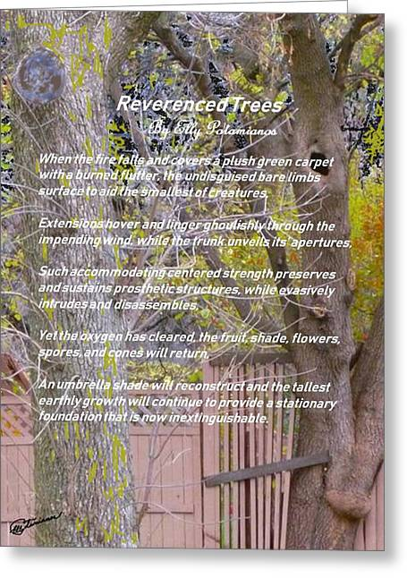 Reverence Of Trees Greeting Card