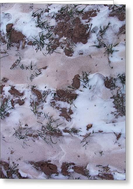 Reversing The Roles - Soil Dusting A Crispy Snow Greeting Card
