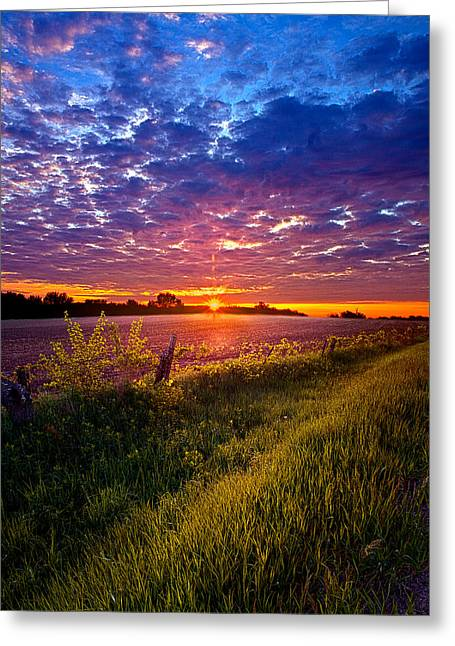 Revival Greeting Card by Phil Koch