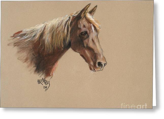 Reyena At The Morgan Horse Ranch Prns Greeting Card
