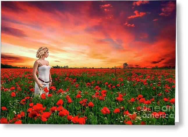 Rhapsody In Red Greeting Card