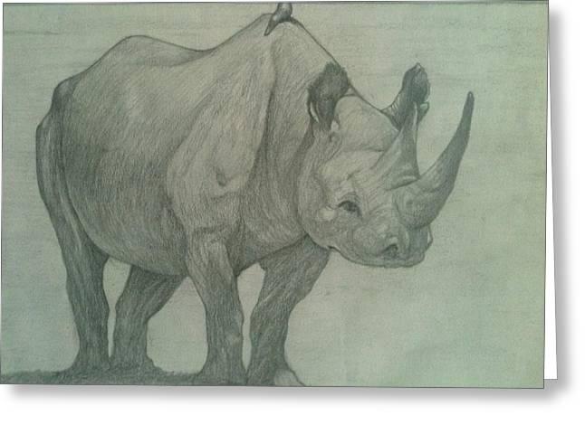Rhinoceros Drawings Greeting Cards - Rhino and Friend Greeting Card by Nigel Wynter