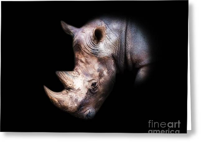Rhino Portrait In Black - Color Version Greeting Card by Vic DeSantis