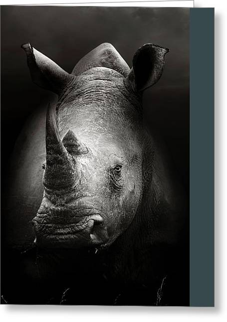 Rhinoceros Portrait Greeting Card by Johan Swanepoel