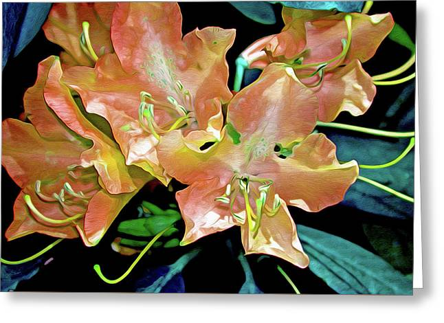 Rhododendron Glory 15 Greeting Card