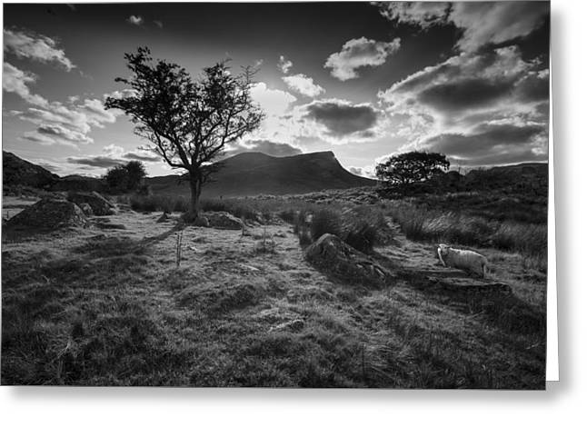 Greeting Card featuring the photograph Rhyd Ddu, Snowdonia, Wales by Richard Wiggins