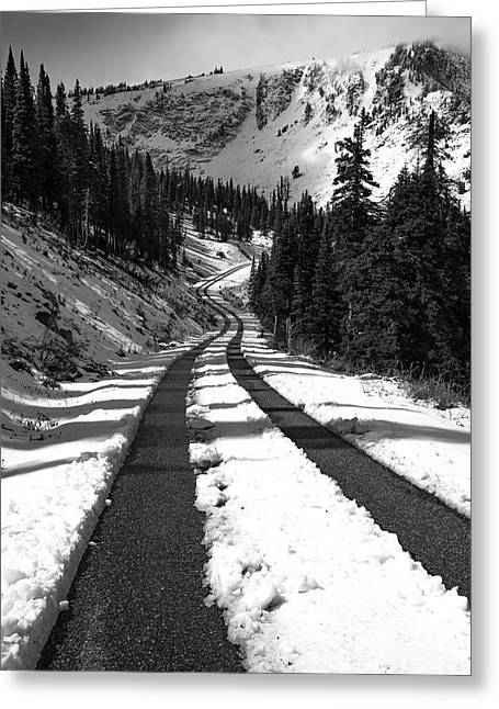 Ribbon To The Unknown Monochrome Art By Kaylyn Franks Greeting Card