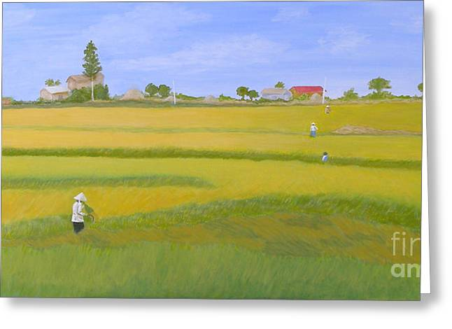 Rice Field In Northern Vietnam Greeting Card by Thi Nguyen