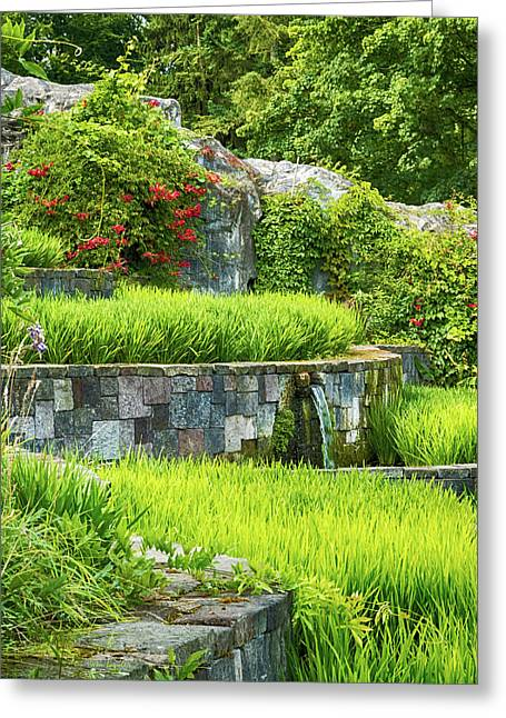 Rice Garden Greeting Card by Wim Lanclus