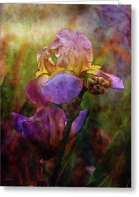 Rich Purple Irises 0056 Idp_22 Greeting Card