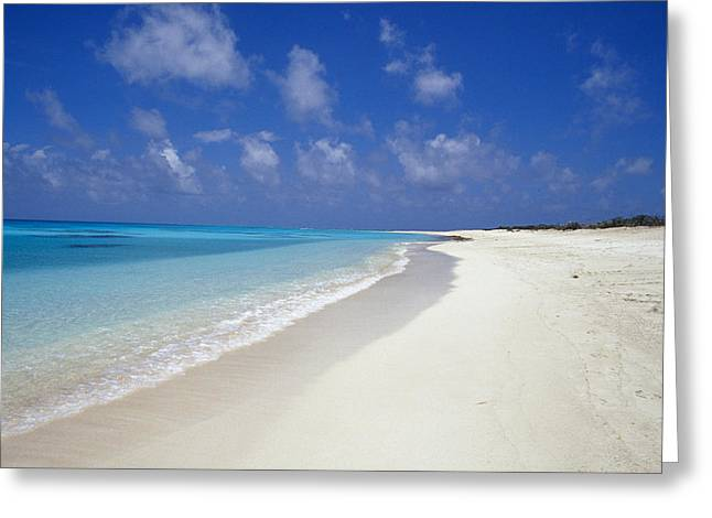 Lapping Greeting Cards - Rich Turquoise Seas And Coral Reefs Greeting Card by Jason Edwards