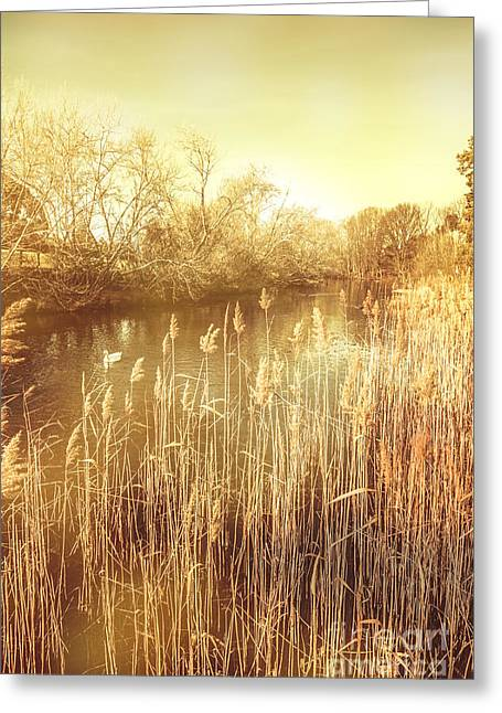 Richmond Tasmania Riverscape Greeting Card by Jorgo Photography - Wall Art Gallery