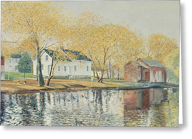 Richmondtown Pond Greeting Card by Anthony Butera