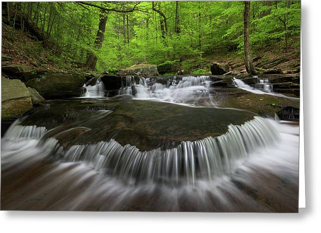 Ricketts Glen State Park Pennsylvania Greeting Card by Mark VanDyke