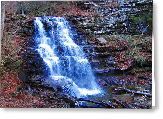 Ricketts Glen Waterfall 3941  Greeting Card by David Dehner