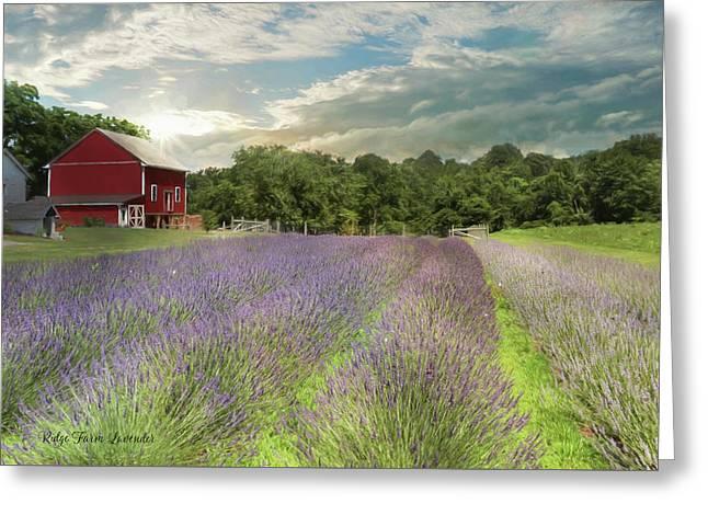 Ridge Farm Lavender Greeting Card