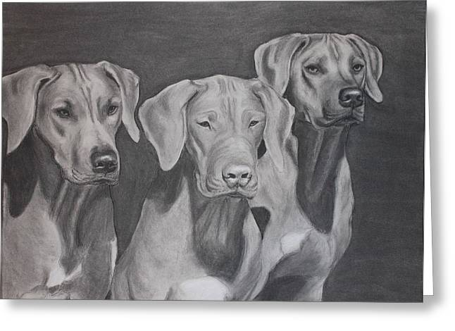Ridgebacks Greeting Card