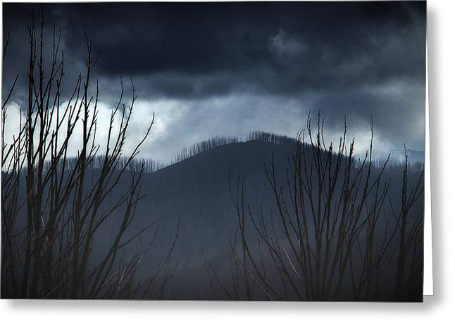 Greeting Card featuring the photograph Ridgeline by Tim Nichols