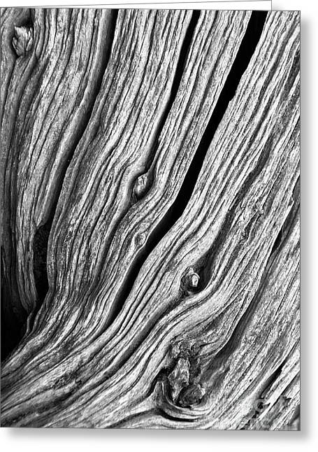 Ridges - Bw Greeting Card