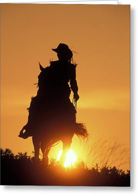 Riding Cowgirl Sunset Greeting Card