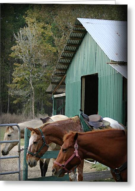 Greeting Card featuring the digital art Riding Horses by Kim Henderson