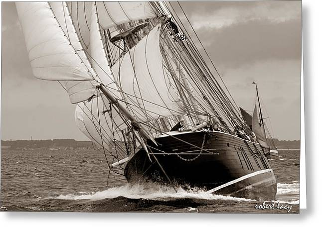 Riding The Wind -sepia Greeting Card by Robert Lacy