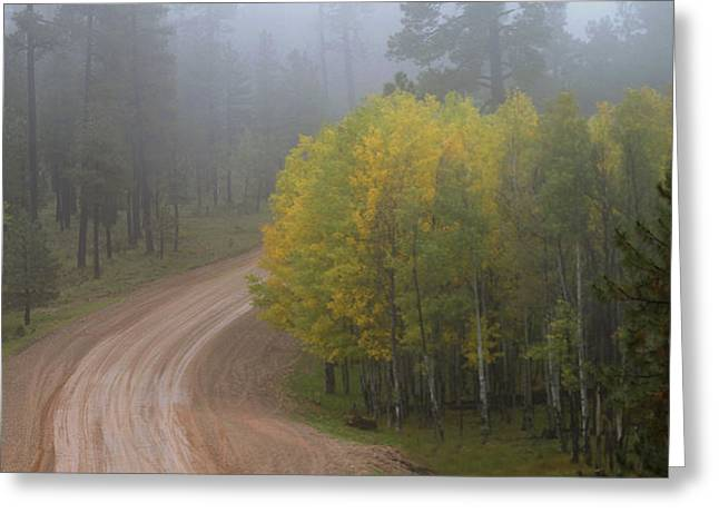 Rim Road Greeting Card