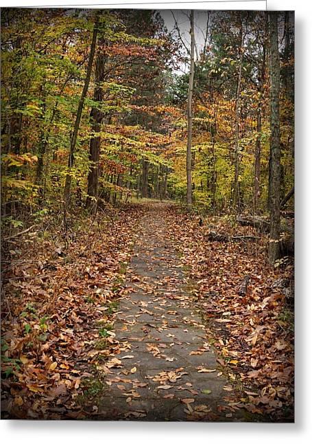 Rim Rock Path Greeting Card by Sandy Keeton