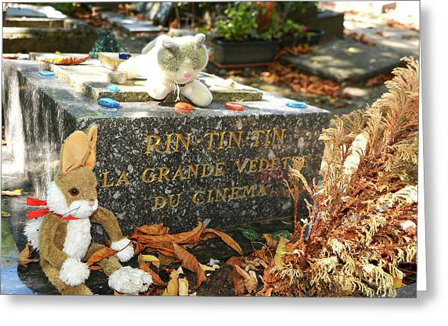 Rin Tin Tin Grave Greeting Card by Penny Parrish