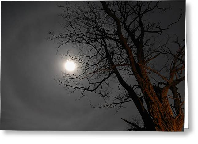 Ring Around Moon Greeting Card by Alan Lenk