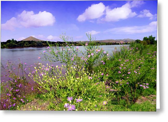 Rio Grande De Las Cruces Greeting Card by Kurt Van Wagner