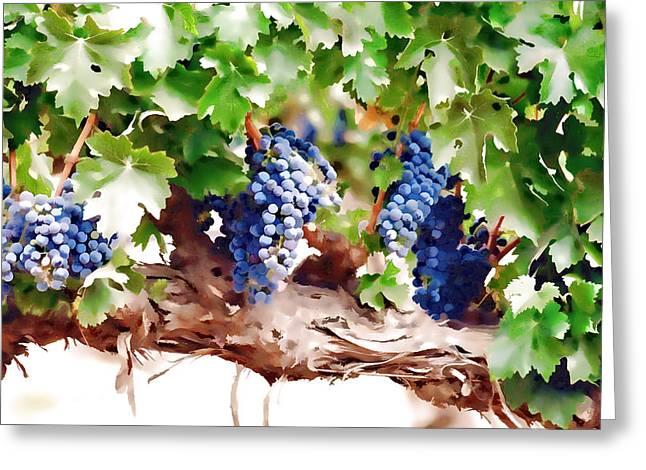 Ripe Grapes Moldova Greeting Card