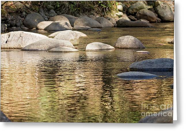 Greeting Card featuring the photograph Ripples And Rocks by Linda Lees