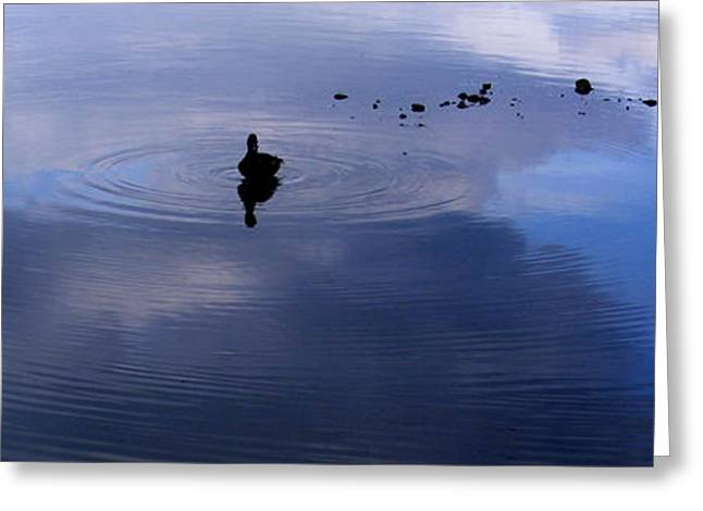 Ripples Greeting Card by Ed Smith