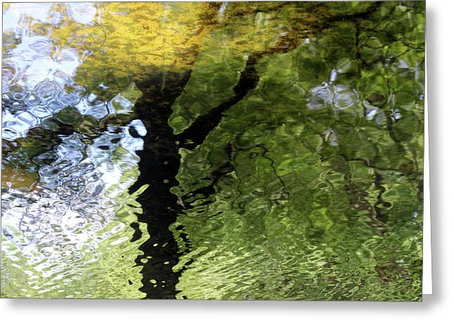 Ripples In Green Greeting Card by Carolyn Stagger Cokley