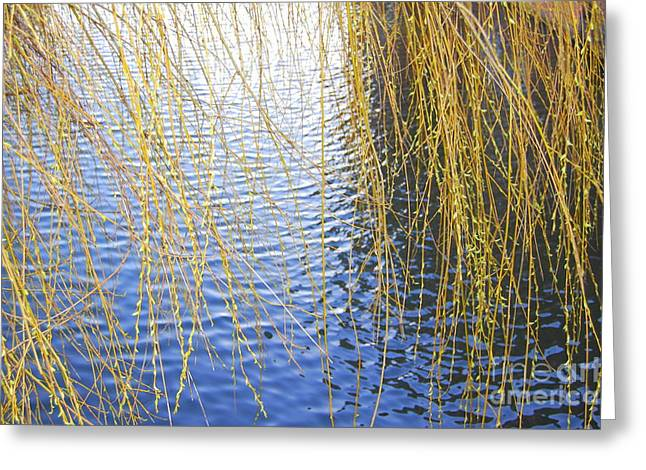 Ripples Greeting Card