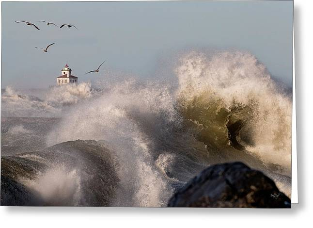 Greeting Card featuring the photograph Rise Above The Turbulence by Everet Regal