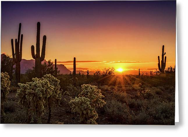 Greeting Card featuring the photograph Rise And Shine Arizona  by Saija Lehtonen