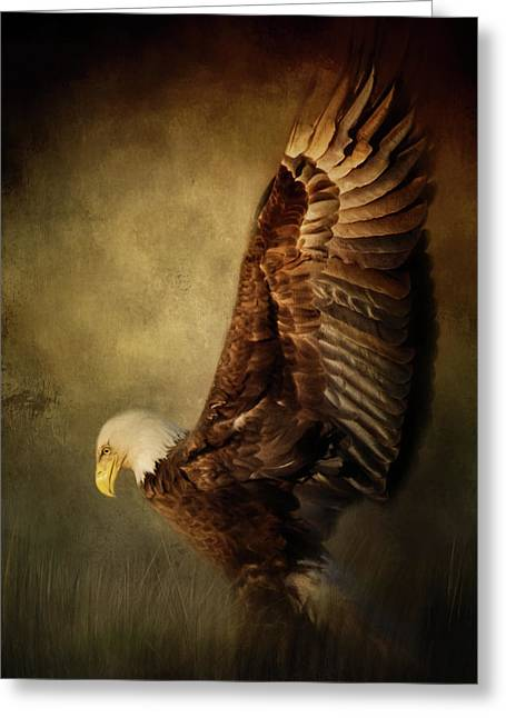Rise Up Bald Eagle Art Greeting Card by Jai Johnson