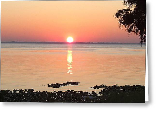 Greeting Card featuring the photograph Rising Sun by Frederic Kohli